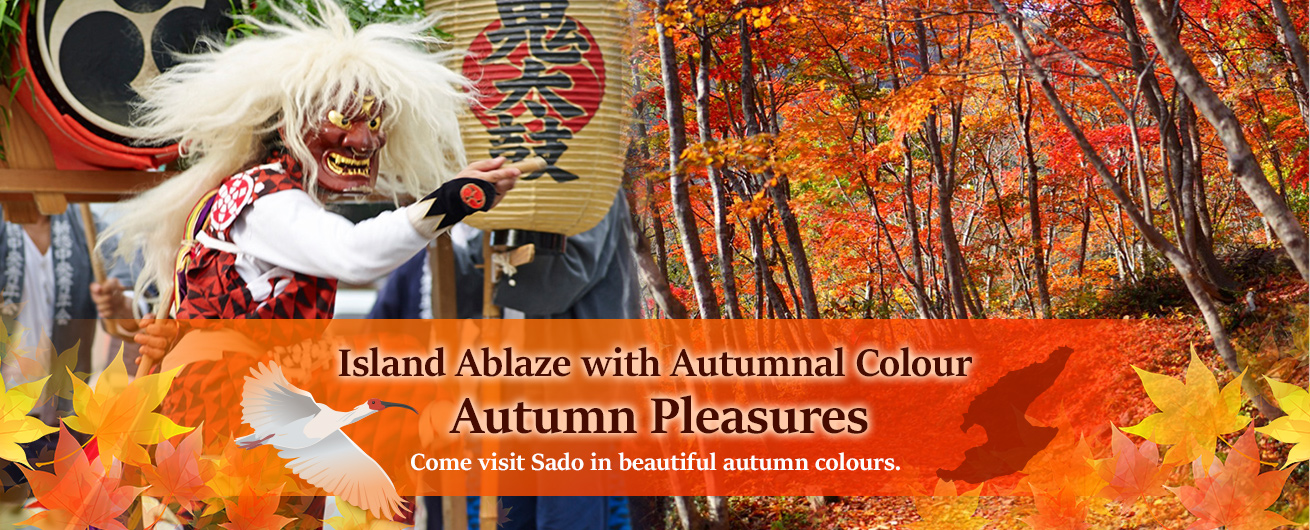 Visit Sado, ablaze with colour for autumn pleasures.