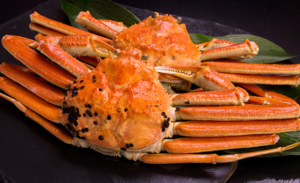 Snow crabs grown in the deep sea